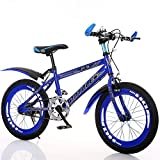 Vélos enfants Draisiennes vélo Pliable Enfants Vélo 6-7-8-9-10-11-12-15 Ans Landau garçon 20/22 Pouces élèves Mountain Bike Vélos et Véhicules pour Enfants HUYP (Color : Blue, Size : 20')