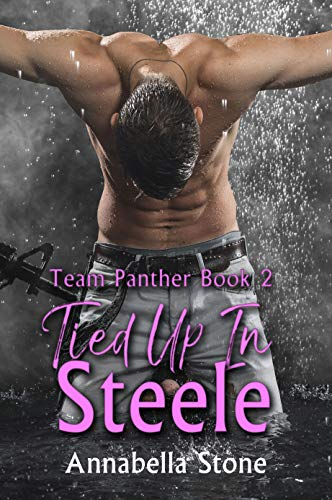 Tied Up In Steele: MM Military Suspense (Delta Force Team Panther Book 2)