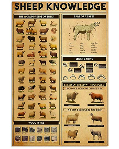Farmer Sheep Knowledge The Worldd Breeds of Sheep Part of Sheep Sheep Caring Poster No Frame Or Framed Canvas 0.75 Inch Print in Us Novelty Quote Meaningful, Motivational