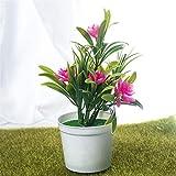 Künstliche Pflanzen Bonsai Kleiner Baum Topfpflanzen Bonsai Lotus Blumen Fake Flowers Topf Ornamente Home Decoration Gartendeko (Color : Pink)