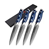Cuchillo de filete Set 4 piezas Damasco cuchillos de cocina japoneses VG10 Damasco de acero cuchillos de uso 67 Las capas...