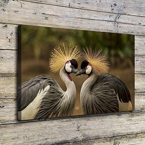 N / A Leinwand Malerei Wandkunst Zwei grau gekrönte Kranich Bilddruck Klassisches Tier Vogel Poster Wohnzimmer Home Decoration Rahmenlos 40cmx60cm