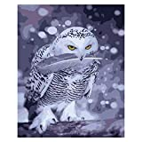 Zhxx Pintar Por Numeros Rotulador Búho Blanco Animal Moderno Arte De La Pared Digital Pintura De La Lona Regalo De Navidad Decoración Para El Hogar 40X50Cm Sin Marco