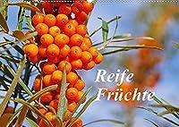 Reife Fruechte (Wandkalender 2022 DIN A2 quer): Lassen Sie sich mit Obst, frisch von Baum und Strauch, durch das Jahr begleiten. (Monatskalender, 14 Seiten )