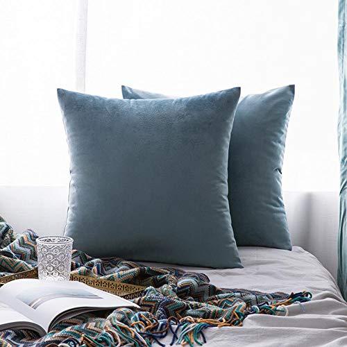 WBXZAL Cojines Decorativos para Sofa,Almohada de Funda Terciopelo,cojin Lumbar Silla Oficina,Cojines Cama,Funda de Almohada,Cojines con Relleno Incluido,2 Piezas-Los 50X50cm_Azul Aguamarina