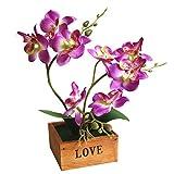 Yunt Phalaenopsis Mariposas Orquídeas Bonsai con Maceta de Madera Suministros de Bricolaje Decoración para el Hogar Flores de Seda Artificial Ramo de Flores de Seda Plantas Plásticas Púrpura