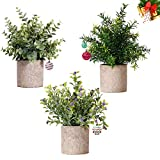 NEW RUICHENG Artificial Plant Flower 3Pack Set with Gray Pots Eucalyptus Rosemary Gypsophila Topiary Shrub Mini Plastic Simulation Plant Fake Green Grass Bonsai for Indoor Office Home Garden Decor