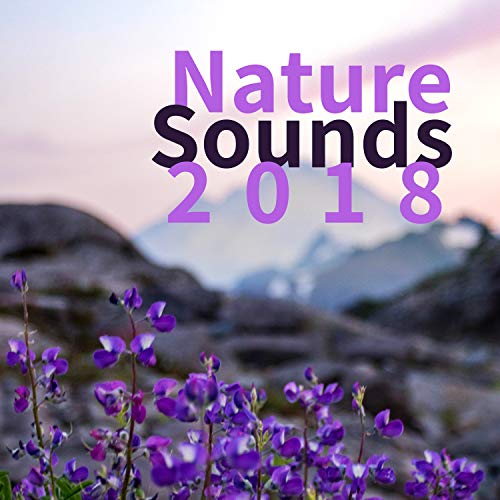 Nature Sounds 2018: HQ Music Player