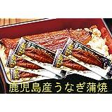 土用丑の日は九州薩摩川内産 たれ付き国産うなぎ蒲焼き真空パック(九州産ウナギかば焼き) 約170g×5尾