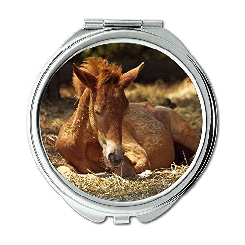 Yanteng Spiegel, Reisespiegel, Tierfarm, Taschenspiegel, tragbarer Spiegel