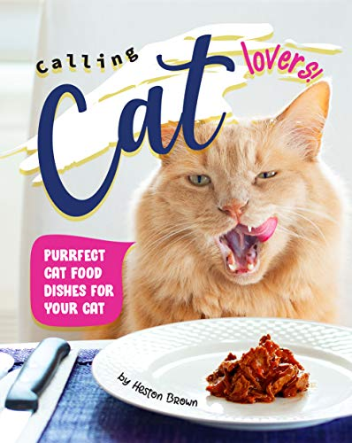 Calling Cat Lovers!: Purrfect Cat Food Dishes for Your Cat...