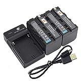 DSTE NP-F750 - Batería y cargador para cámaras Sony CCD-TR710, CCD-TR713E, CCD-TR716, CCD-TR717, CCD-TR717E, CCD-TR718, CCD-TR718E, CCD-SC65, CCD-SC7, CCD-SC7/E CCD-SC8/E CCD-SC8/E 9.