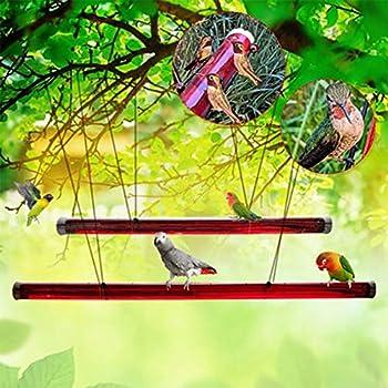 Anna s Bird Feeder,Best Humming Squirrel Proof Bird Feeders,Baffle for Bird Feeder,Fowl Language Bird Mug,for Outdoors Deck Patio Garden Yard,Easy to Clean  Red-19.69in
