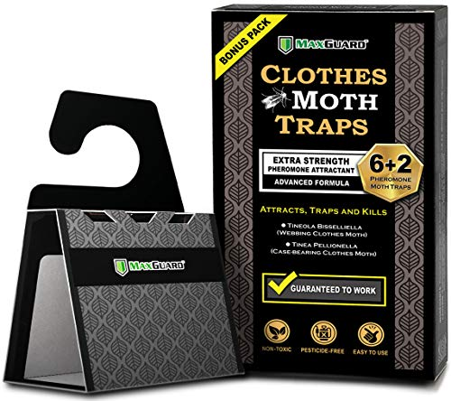 Maxguard Clothes Moth Traps (6+2 Free Traps) with Extra Strength Pheromones   Non-Toxic Sticky Glue Trap for Closets and Carpet Moths   No Mothballs   Lure, Trap and Kill Case-Bearing Webbing Moths  