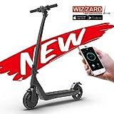 Wizzard EON City E Scooter Leistungsstarker Elektro Roller mit 25 Km/h und 20 Km Reichweite, 12 Kg Gewicht (Weiß)