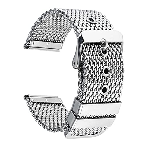 HUMINGG Correa Reloj Reloj Band + Herramienta para Reloj Universal Reloj de Acero Inoxidable Correa de reemplazo Pulsera de la Correa de la muñeca (Color : Silver, Size : 24mm)