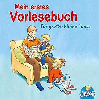 Mein erstes Vorlesebuch für große kleine Jungs Titelbild