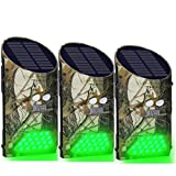 Lilbees Solar Deer Feeder Lights Motion Activated Green Hog Lights for Predator Coyote Pig Varmint Night Hunting(G300)(Pack of 3)