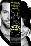 Posters Silver Linings Playbook Mini 28cmx43cm