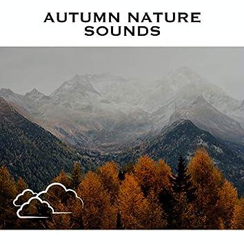 Autumn Nature Sounds