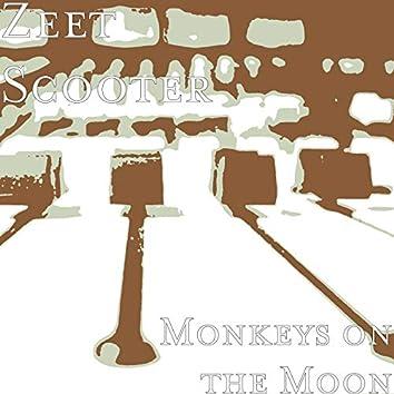 Monkeys on the Moon
