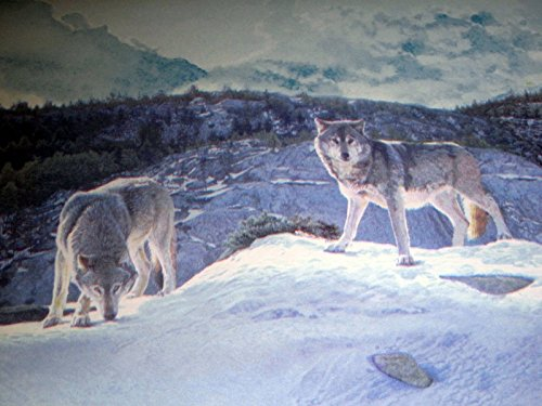 Willow Lake Timber Wolves Wolf Pack Lodge Wallpaper Border - CW102771