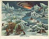 WallBuddy Arktis-Poster Arctic Illustration im Vintage-Stil
