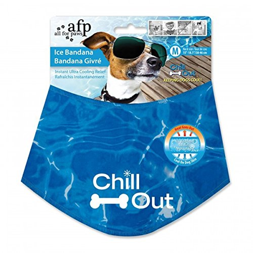 Chill Out - Always Cool Ice Bandana Kühlendes Hunde Halstuch für Hunde High-Tech S-L Halsband-Kühlung ohne Kühlschrank-