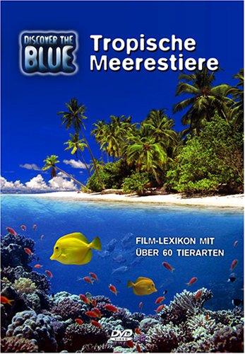 Discover The Blue - Tropische Meerestiere