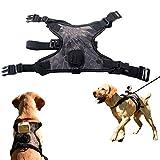 Fetch - Arnés para perro GoPro, con cámara de acción para cámara de...