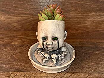 Best doll head planters Reviews