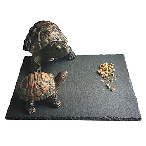 "Cakocaco 12""x8"" Reptile Basking Platform Tortoise Rock Plate Turtle Feeding Food Dish Grind Nails Reptile Resting Terrace Reptile Habitat Decor (1pc)"