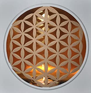 Light Circles/fuentes De Luz (Flower of live/Flor de la vida)