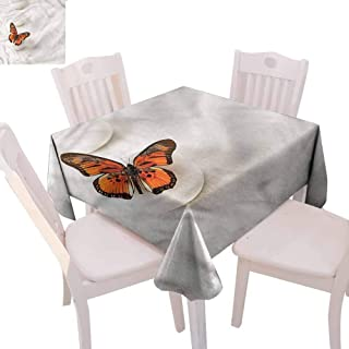 Zara Henry Spa Pink Round Tablecloth Butterfly Rocks Healing Decorative Solid Tablecloth W50 xL50