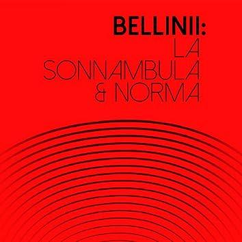 Bellini: La Sonnambula & Norma