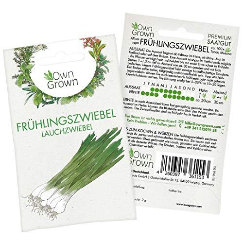 Premium Frühlingszwiebel Samen (Allium cepa), Lauchzwiebel Samen zum ganzjährigen Anbau im Haus, Garten und auf dem Balkon - Für ca. 100 Lauchzwiebel Pflanzen - Frühlingszwiebel Saatgut von OwnGrown