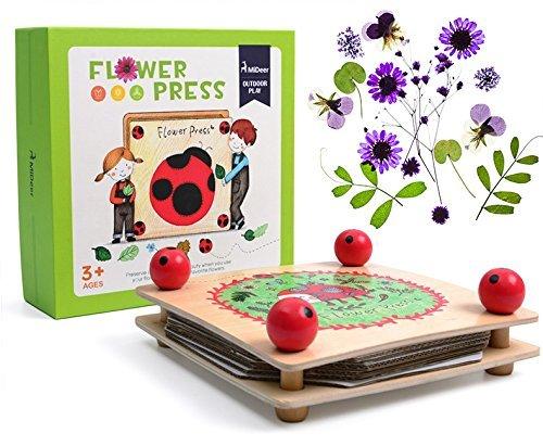 WISHTIME Blumenpressen für Kinder , Blumenpresse aus Holz schlicht und stabil schick gestaltet (Bastel- und Geschenkidee)