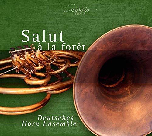 professionnel comparateur Salutà la Forêt, une œuvre d'art sur la corne choix