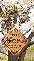 記念樹プレート (吊下げ用フック付き: ゴールド)