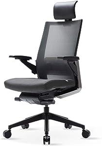 SIDIZ T80 Highly Adjustable Ergonomic Office Chair (T800HLDA): German Ultimate Sync Mechanism for Extreme Comfort, Headrest, Ventilated Mesh Back, Lumbar Support, 3D Arm, Seat Slide/Slope (Dark Gray)