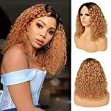 Curly Wave Human Hair Ombre Lace Front Wigs 14inch Short Bob Wavy 1b30 Two Tone Deep Curly Human Hair Wig Brazilian Hair for Black Women Short Water Curly Bob Wigs 150% Density (T1B/30, 14inch)