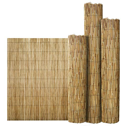 FlickBuyz Bamboo Natural Garden Peeled Reed Fence Screening Roll Privacy Border Wooden Wind/Sun Protection (L- 4M X H-1.5M)