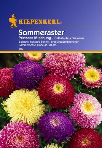 Sperli Blumensamen Prinzeß-Aster Callistephus Mischung, grün