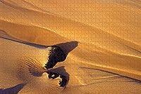 大人のためのジグソーパズルアメリカアメリカアラモサコロラド砂丘パズル1000ピース木製旅行のお土産