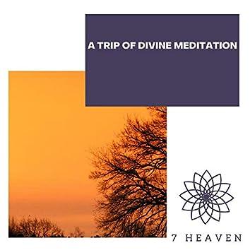 A Trip Of Divine Meditation