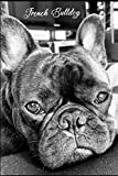 French Bulldog Day Planner Gift: Gift For French Bulldog Owners