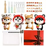 Needle Felting Kit for Beginners, Needle Felting Starter Kit with 6 Pcs Colorful Needle Felting Needles and Instructions, Wool Felting Supplies for Christmas, Children's Day, Other Festival and Crafts