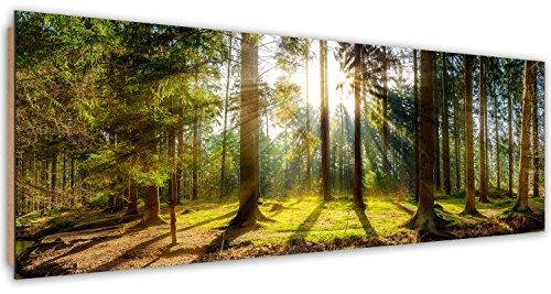 Feeby, Wandbild, Deco Bild, gedrucktes Bild, Deco Panel, Bild, Panoramabild 53x158 cm, Wald, BÄUME, Natur, Sonne, GRÜN, BRAUN