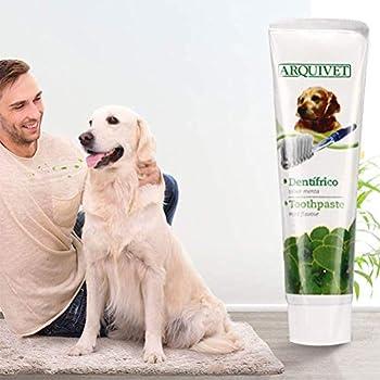 Akemaio Pet Dog Dentifrice Kit de Brosse à Dents Soins Dentaires Kit de Dents Propres pour Chiens Chats