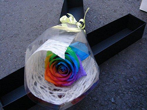 【クール 【生花】 ブラックボックス レインボーローズ 生花 花束 ギフトボックス